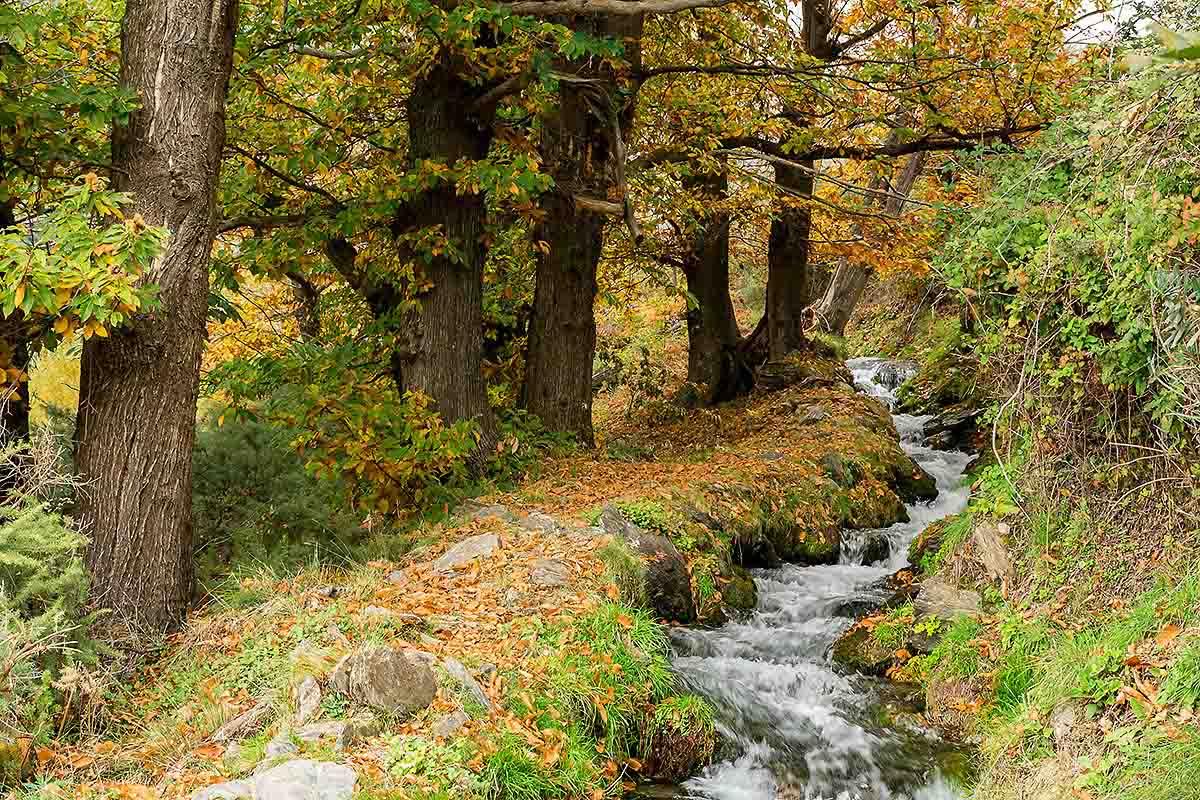 beautiful hiking path along riverside in Sierra Nevada best place for trekking